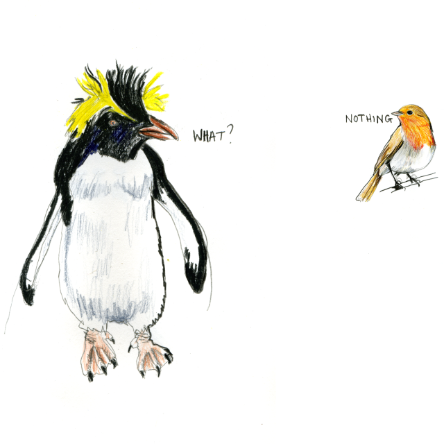 penguin and robin